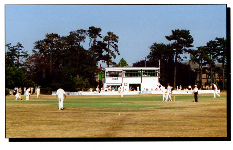 1980 Hadleigh and Thundersley Cricket Club